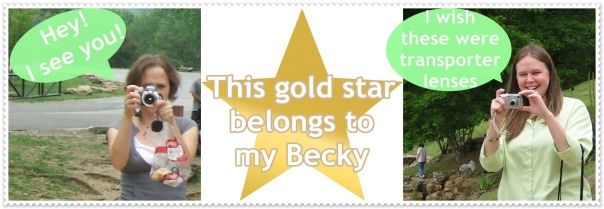 beckys-gold-star